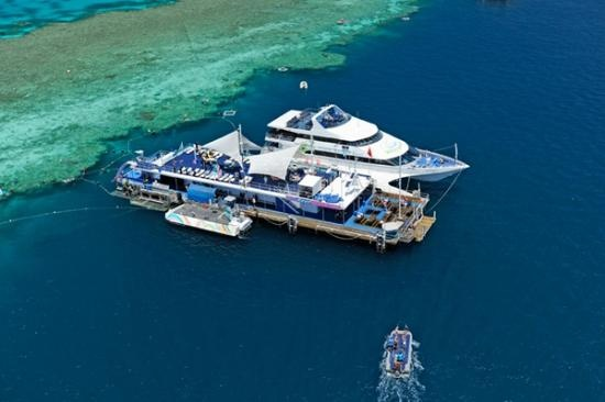 Images of Cruise Whitsundays, Airlie Beach - Attraction Pictures - TripAdvisor