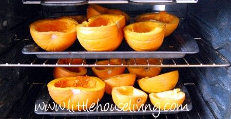 Preserving Pumpkin – How to Preserve Pumpkin – Freezing Pumpkin Puree