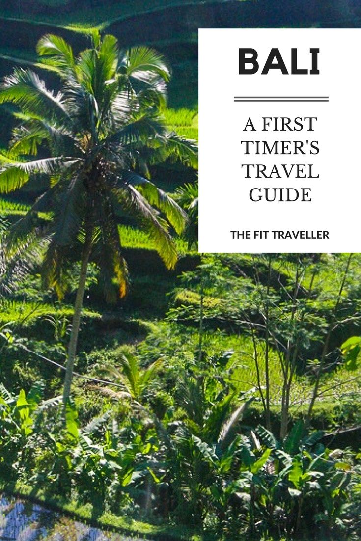 A First Timer's Travel Guide to Bali, Indonesia |Planning a trip to Bali? Here is everything you need to know to plan your trip and get settled into the island like a local. ********** Best in Bali | Bali Travel Guide | First Timer's Guide to Bali | Where to Stay in Bali | What to do in Bali | Is Bali Safe | Safety in Bali | Bali Visas | Bali, Indonesia | Things to do in Bali | Things to do in Indonesia |