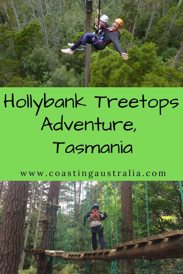 Hollybank Treetops Adventure Family Fun In Tasmania Coasting Australia Family Adventure Tasmania Coast Australia