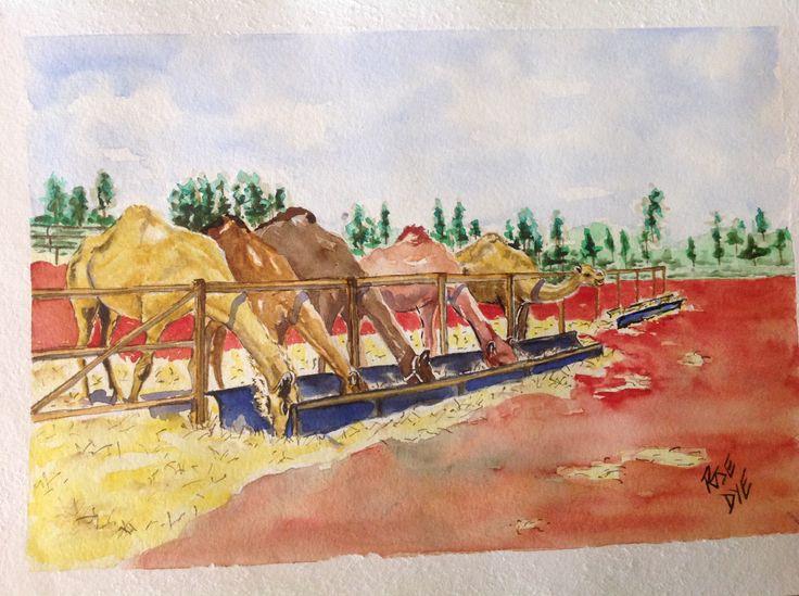 "Camels - ""Tea time"" Watercolour"