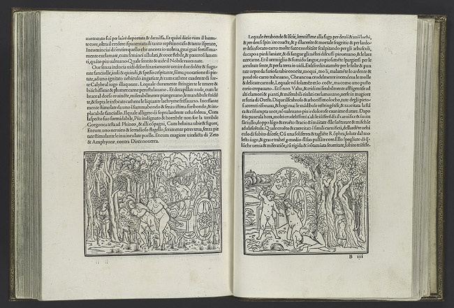 Hypnerotomachia Poliphili (Poliphilo's Dream about the Strife of Love)  Author: Francesco Colonna  Venice: Aldus Manutius, 1499  Woodcut illustrations with printed text    bound volume: 11 3/8 x 8 1/2 in. (29 x 21.5 cm)  Gift of J. Pierpont Morgan, 1923 (23.73.1)