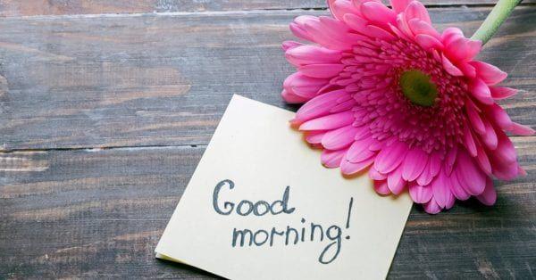 Guten Morgen Sms Sprüche Freundschaft Guten Morgen Liebes