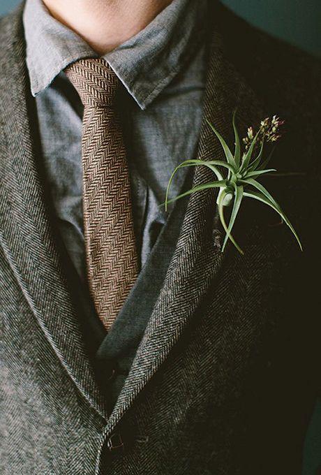Brides: Tillandsia Boutonniere. For a modern, hip alternative to a floral…