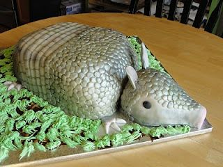 Armadillo Cake! Does this remind you of Steel Magnolias, the movie with Julia Roberts and Dolly Parton?