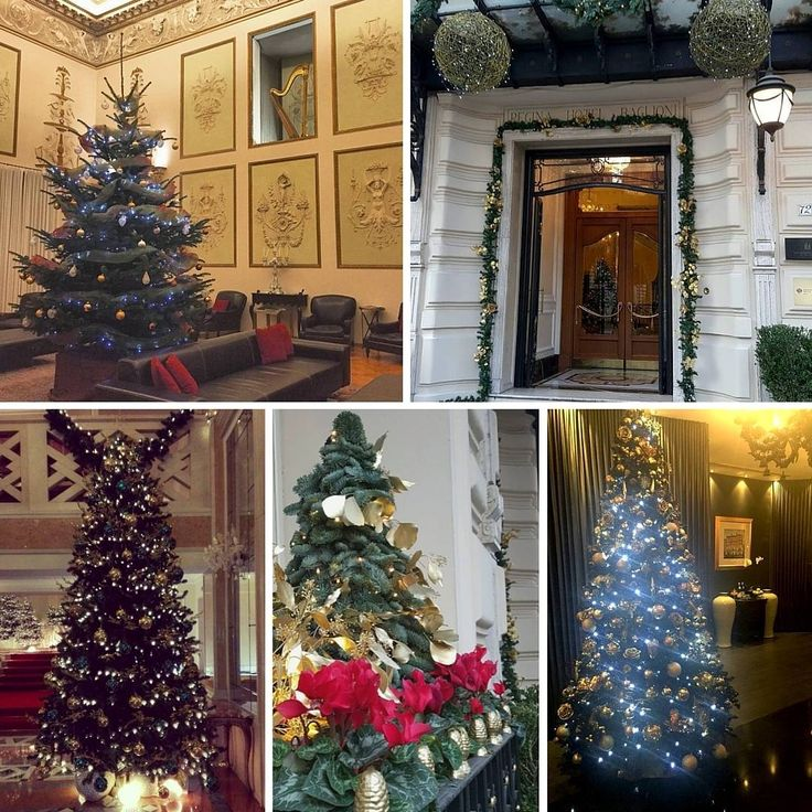 We feel Christmas vibes in our hotels! What about you? Have you already started decorating your place? #BaglioniHotels #Christmas #Christmastrees #Christmas2015 #christmasinitaly #christmastime #trees #italy #luxuryhotels