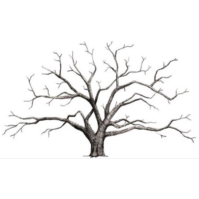 Small Fingerprint Live Oak Tree Wedding Guest Book Hand Drawn: Best 25+ Wedding Fingerprint Tree Ideas On Pinterest