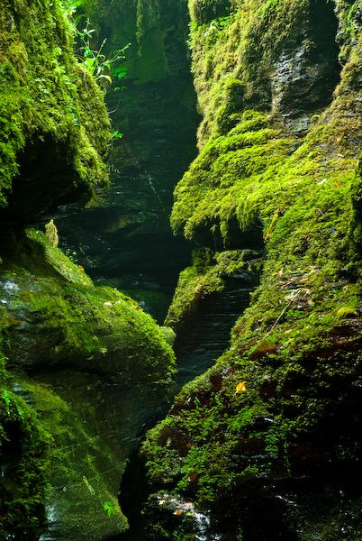 Devil's Cauldron Lydford Gorge UK     The most memorable walk I ever undertook, it was beautiful, longing to go back there...soon
