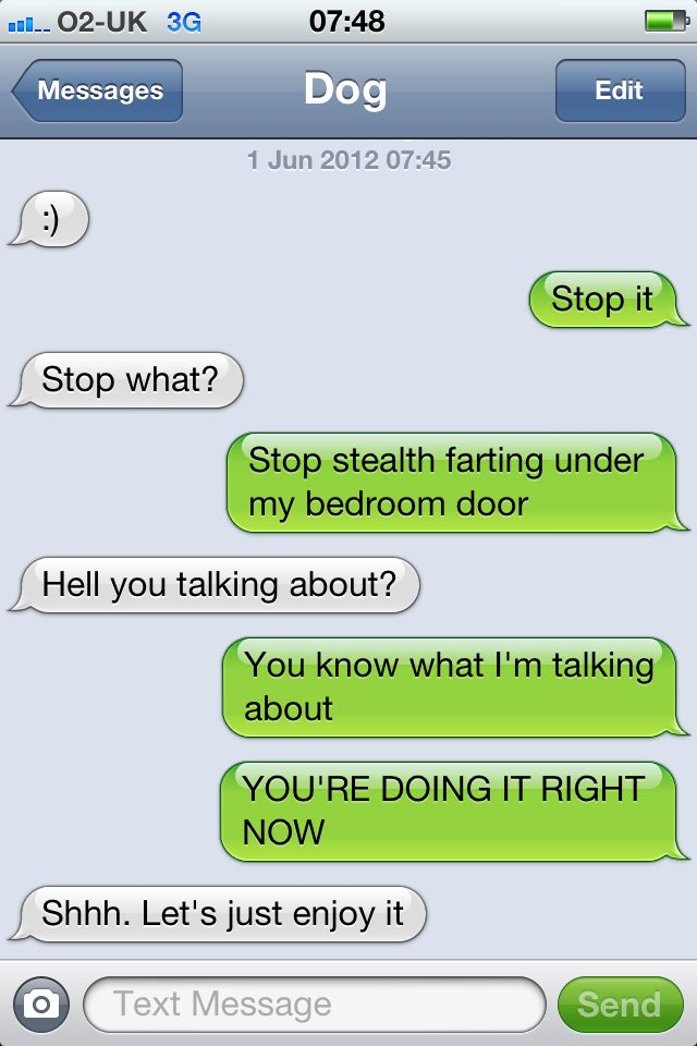 from the ever popular texts from dog tumblr :0): Funny Texts,  Internet Site,  Website, Stealth Farts, Funny Pictures, Web Site, Funny Stuff, Dogs Texts, Funnies