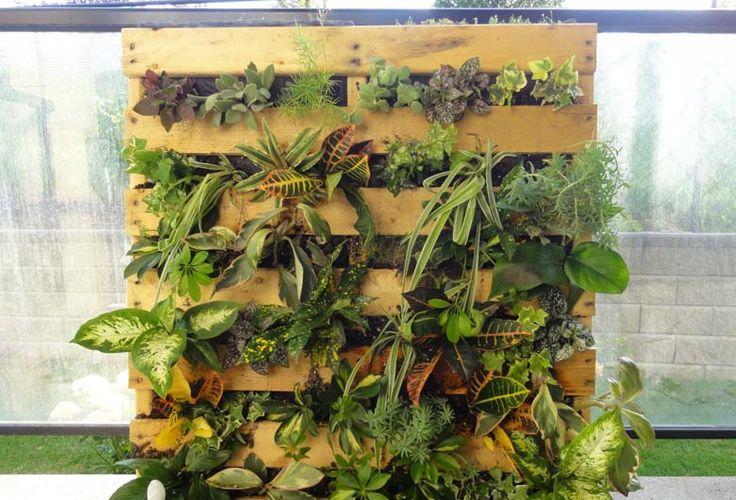 M s de 1000 ideas sobre jardines verticales caseros en for Jardin vertical reciclado