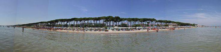 Hotel la Pineta Pineto the best pic - the best holidays