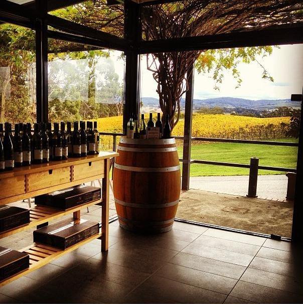 wine tasting in adelaide hills, australia