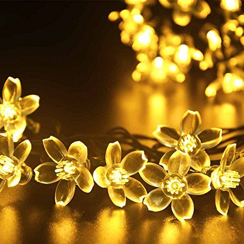 LederTEK Solar Fairy String Lights 21ft 50 LED Warm White Blossom Decorative  Gardens, Lawn,