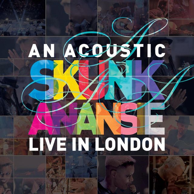 You Do Something to Me - Live and Acoustic, a song by Skunk Anansie on Spotify