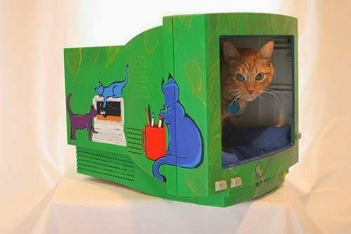 monitor viejo para que tu gato juegue