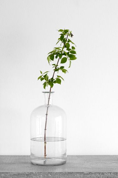 Simplicity is the key! #glass #vase