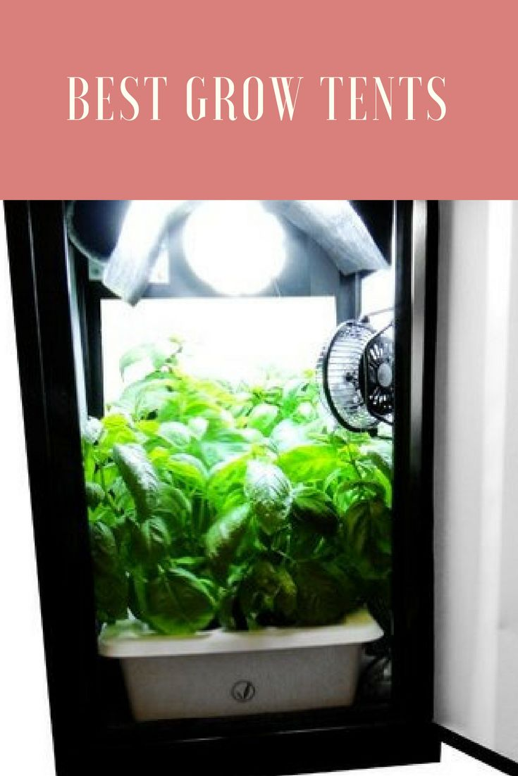 In this article, we�ve pulled together ten of the best grow tents available today according to buyers reviews in the hope of making your decision much easier. For the avid grower, being able to protect your plants and vegetables during the colder months can become a challenge.