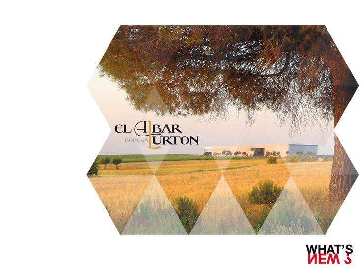 WN JUIN 2014 - Espagne, Nouveaux Projets - Graphisme & Developpement Chloé VEYSSET & Matthieu HARQUIN