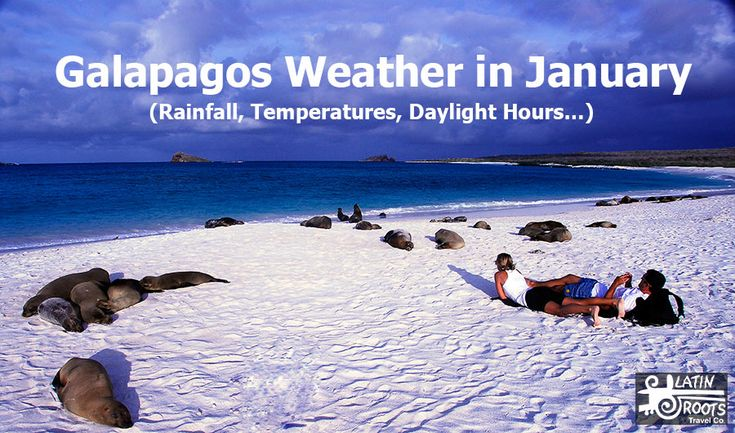 The following statistics are based on the town of Puerto Ayora, located on the southern coast of Santa Cruz Island. This is one of the most popular towns in the Galapagos. Weather patterns and temperatures don't vary much from one island to the next.