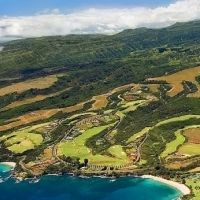 Should the PGA Expand the Field at the Hyundai Tournament Of Champions I'm interested as to how others feel about the PGA changing the format of the Hyundai Tournament of Champions. http://golfequipmentdw.com/new-premium-golf-carts