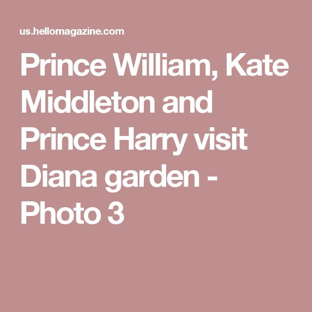 Prince William, Kate Middleton and Prince Harry visit Diana garden - Photo 3