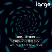 Local Options | Dream In The Sky (preview) by Large Music on SoundCloud