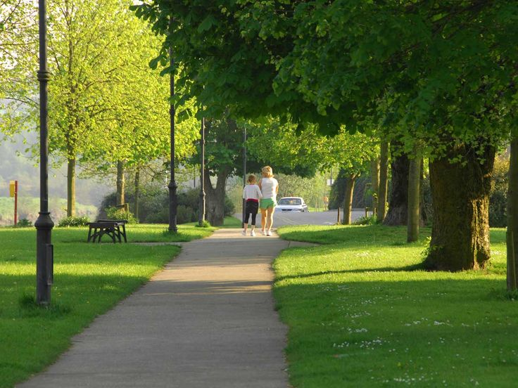 The Promenade Walk ---- Enniscorthy  Right at out doorstep you will find the most pleasant area to walk and gather your thoughts while enjoying nature in its best form. Enjoy a 5 Km walk down the Promenade where you will find lots of wildlife and Fauna.