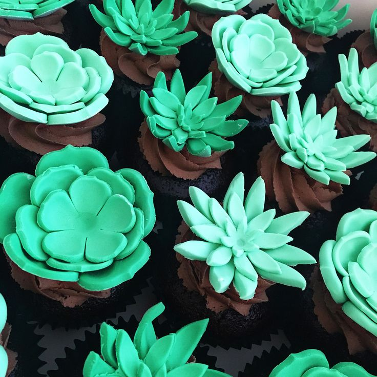 """91 Likes, 2 Comments - Savvy Cakes - Sydney (@savvycakessydney) on Instagram: """"Succulents 🌵🌵🌵 #cupcakes #savvycakes #succulents #handmade #sydneycakes #sugarflowers #cakeartist"""""""