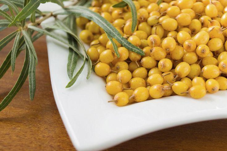 Облепиха является поистине целебной и полезной для человеческого организма ягодой. В ней собрано огромное количество уникальных микроэлементов, витаминов и других полезных веществ. Именно поэтому полезные свойства облепихи очень ценятся в народной медицине.