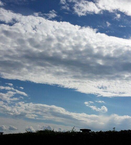 Su in alto nei cieli della campagna vercellese