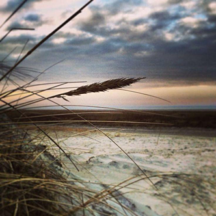 Beautiful beach at Schiermonnikoog - The Netherlands