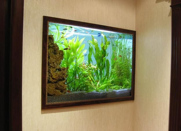 17 Best Ideas About Fish Tank Wall On Pinterest Wall