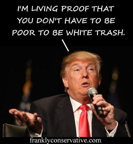 Donald Trump                                                                                                                                                      More