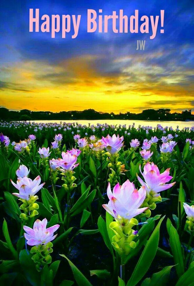Pin By Monica Mabee On Happy Birthday Beautiful Nature Beautiful Landscapes Beautiful Flowers