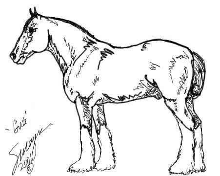 Clydesdale horse coloring pages ~ 305 best Color: Horses, Donkeys, Mules, and Tack images on ...