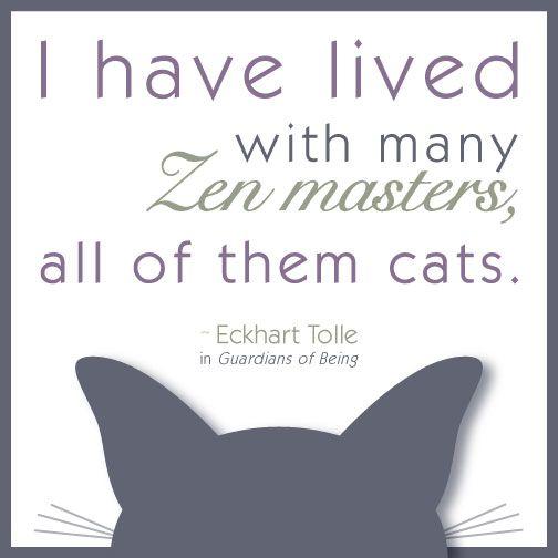 Eckhart Tolle quote - Zen master cats