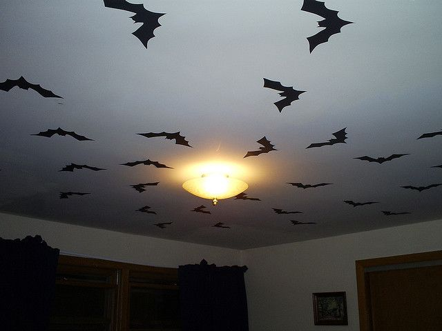 I spent a few hours on a Saturday covering the ceiling of my bedroom with black paper bats. Yes, was a bit early for Halloween, but I had an irresistible urge to get an early start on the decorations.