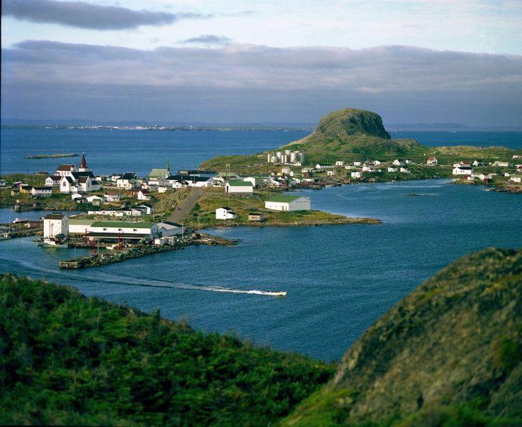 'FOGO' FOGO ISLAND , NEWFOUNDLAND CANADA