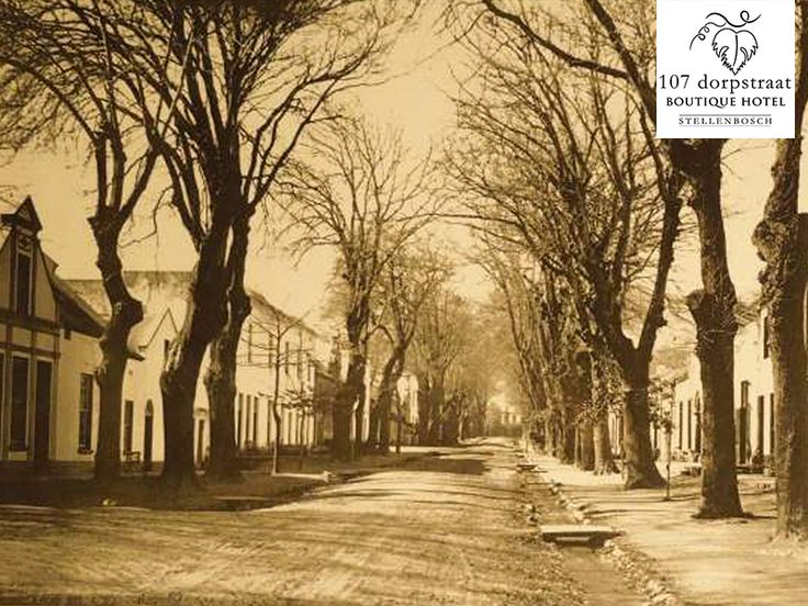 #ThrowbackThursday to what Dorp Street used to look like in the 19th century.