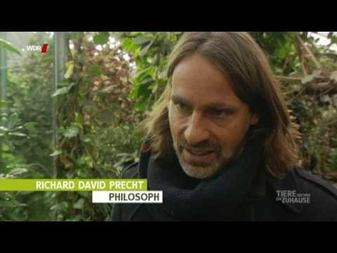 Richard David Precht | WDR 5 Neugier genügt - Redezeit - YouTube