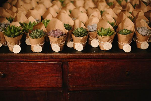 succulent favors in a kraft paper wrapping
