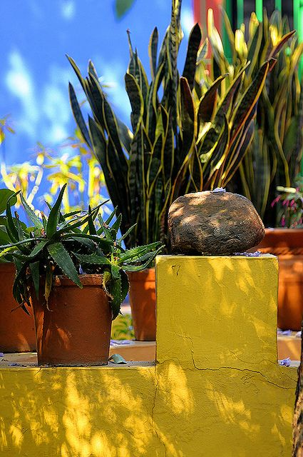 Colors of Frida Kahlo's House, Del Carmen, Coyoacan, DF, Mexico.  Photo: Sigfrid Lopez via Flickr