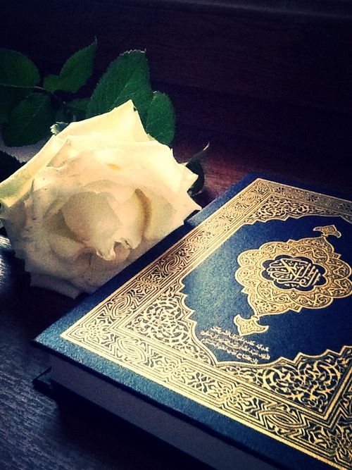 read the glorious Qur'an
