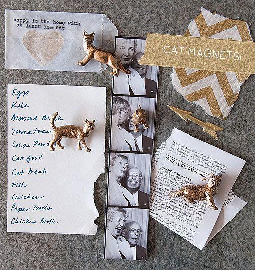 Cat Magnets
