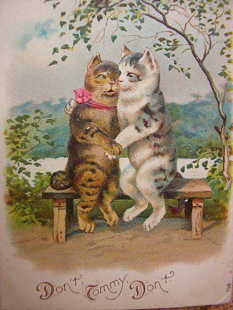 Именем, винтажные открытки кошки