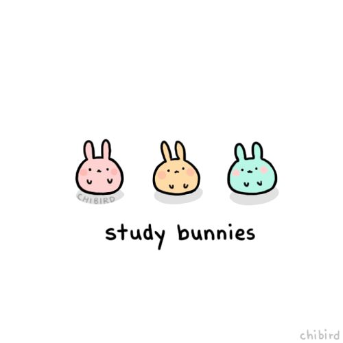 chibird:  If you still have finals like me, these study bunnies will help you out! >w< Good luck to everyone with their studies~