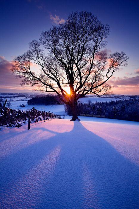 Prachtige zonsondergang in een sneeuwlandschap in Yorkshire, Noord-Engeland. #zon #Engeland #Yorkshire #sneeuw