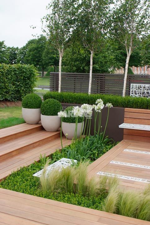 Structured Urban Garden containing White Agapanthus, grasses and ferns that rise up from the boxwood ball topiaries in planter boxes; giving a feeling of serenity in this small space.
