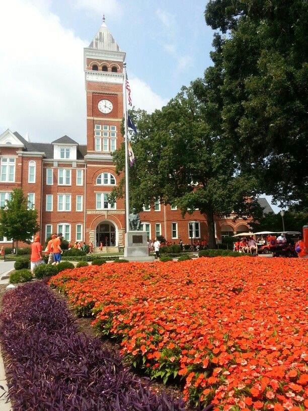 Do you think I can get into Clemson University?