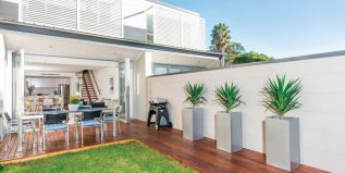 Sunny north garden, deck, level lawn